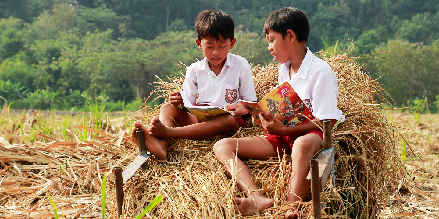 A needs-based early childhood care and development model