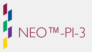 NEO Personality Inventory 3 (NEO PI-3)