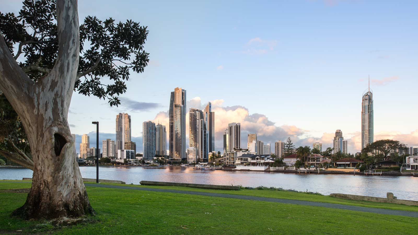 Gold Coast view from park