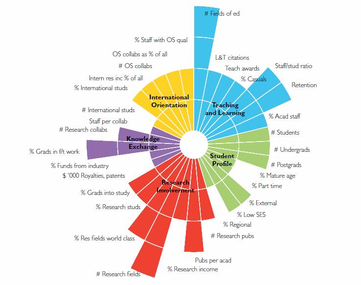 University diversity profile