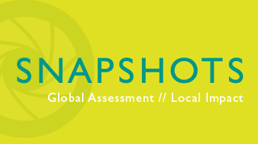 Snapshots - Global Assessment, Local Impact